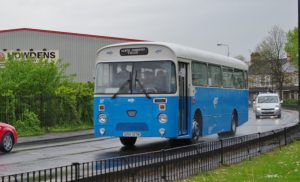 IMGP1203 (2)